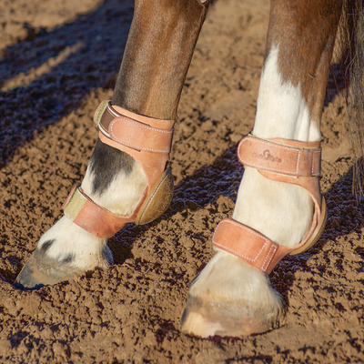 Classic Equine Performance Skid Boots - Velcro