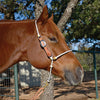 Martin Saddlery Adjustable Rope Headsetter