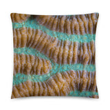 Brain Coral Decorative Pillow