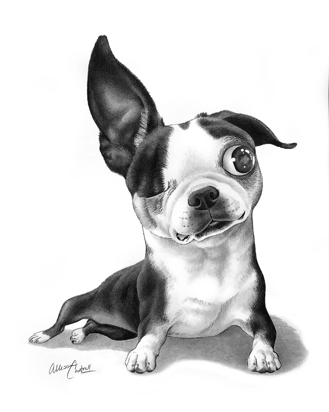 Custom Portrait in Pencil