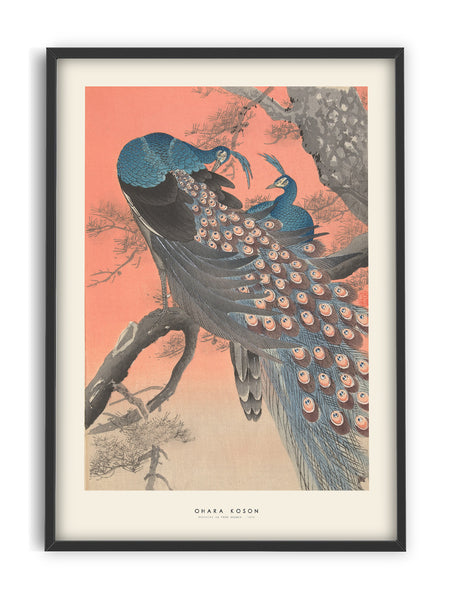 Ohara Koson - Peacocks on tree
