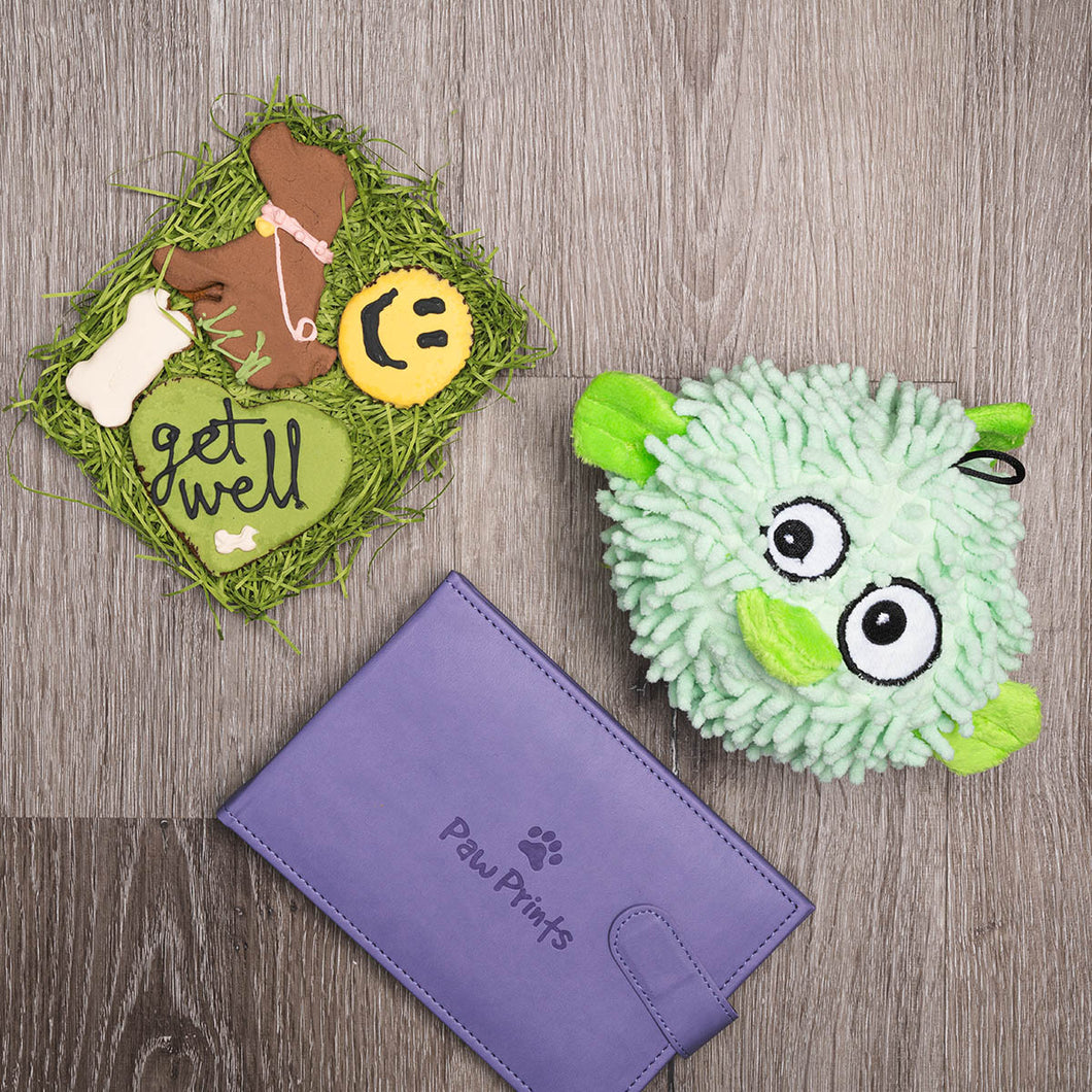 Feel Better Friend Dog Gift Set