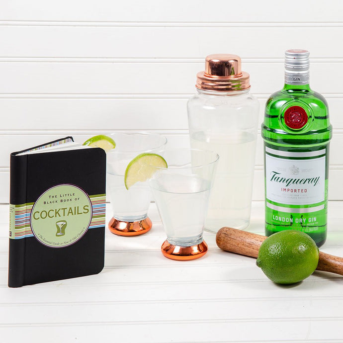 Gin & Tonic Shaker Set With Tanqueray Imported Gin - GiftBasket.com - Gift Set