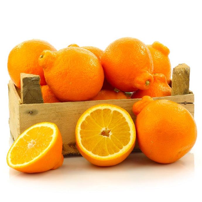 Honeybell Oranges - GiftBasket.com - Gift Box