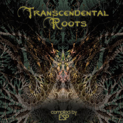 VA - Transcendental Roots - 2015 - CD / Digital download