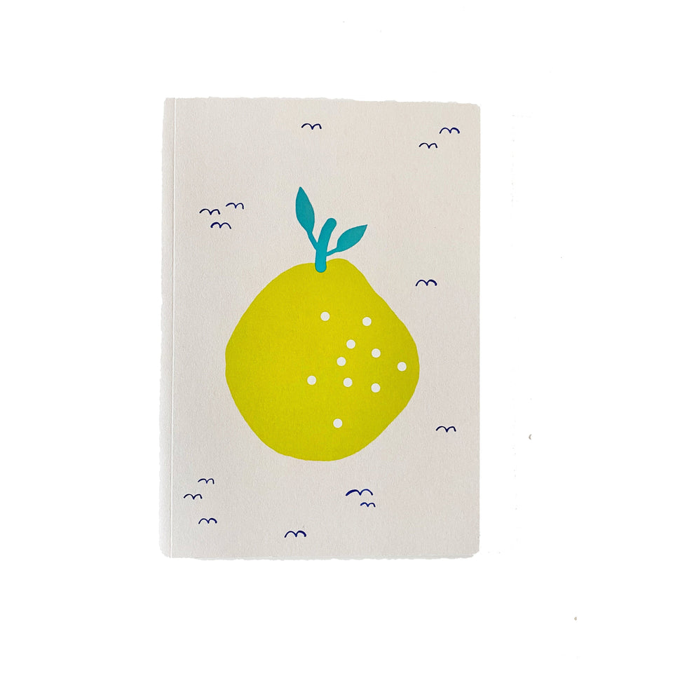 Noull Quaderni Quaderno Little Fruits