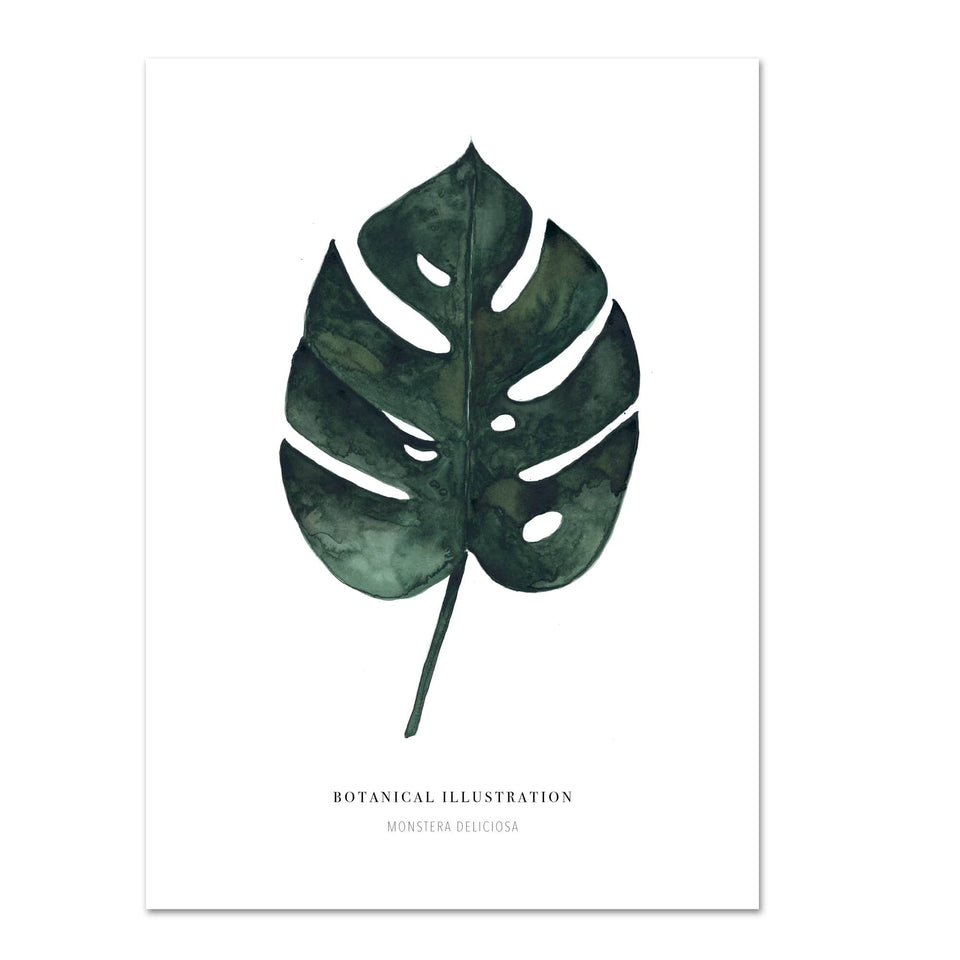 Leo La Douce Stampa Stampa Monstera