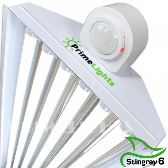 LED StingRay 6 XL MOTION ACTIVATED Shop Light (FROSTED LED)