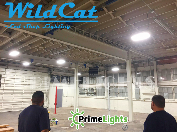LED WILDCAT 110 Bay Shop Light - 14,300 Lumens