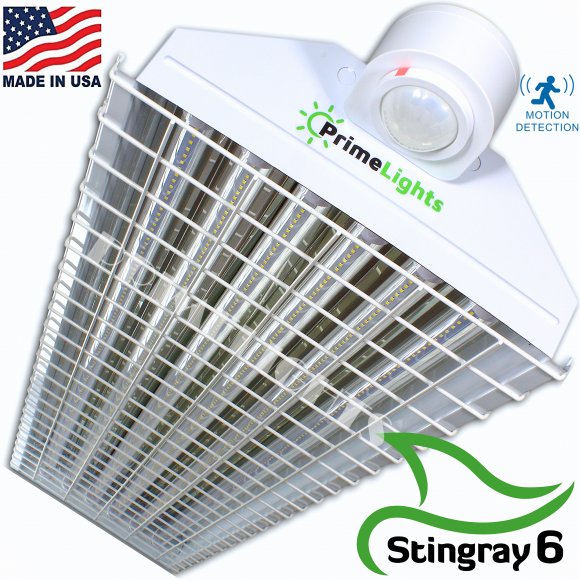 LED StingRay 6 XL MOTION ACTIVATED Shop Light With Wire Guard (CLEAR LED)