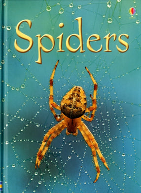 Spiders-9780746074794