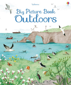 Big Picture Book of Outdoors-9781409598732