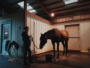Equestrian Rubber Flooring: How to Choose the Right Matting for Your Stable