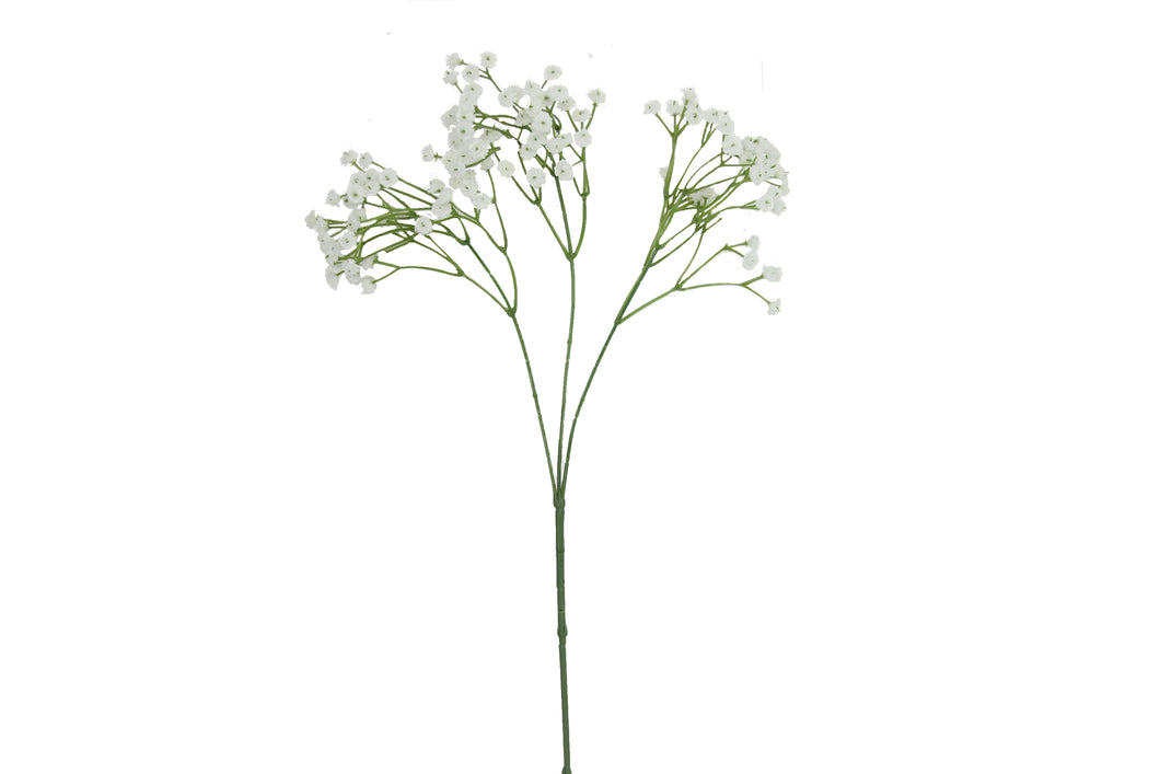 White Gypsophila Spray