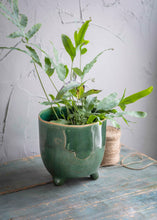 Load image into Gallery viewer, FOREST GREEN POSITANO POT
