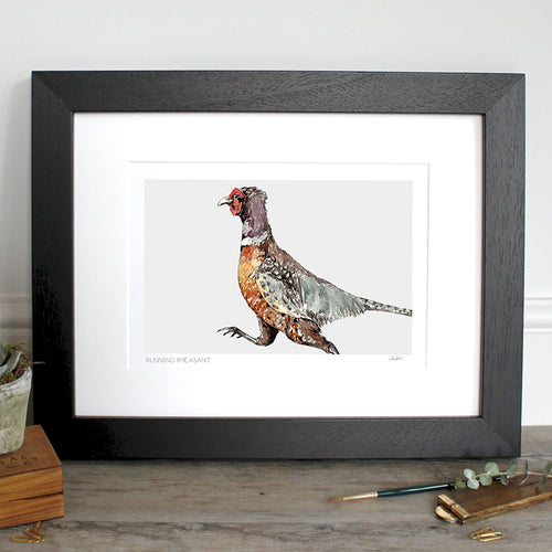Running Pheasant 12×16″ Mounted Fine Art Print