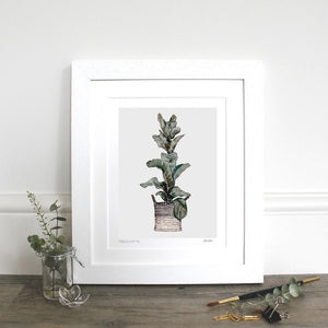 "Fiddle Leaf Fig 10x12"" Mounted Fine Art Print"