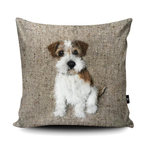 'Rough Haired Jack Russell' Dog Cushion