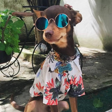 Load image into Gallery viewer, Spring clothes for dog and cat - Acollardog