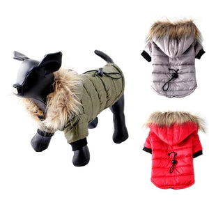 Warm and cozy coat for the dog - Acollardog