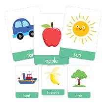 Charts, Posters & Flashcards