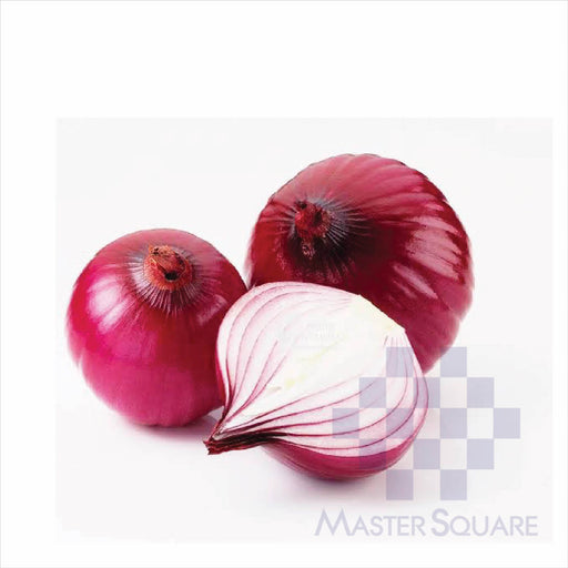 Red Onion-Master Square