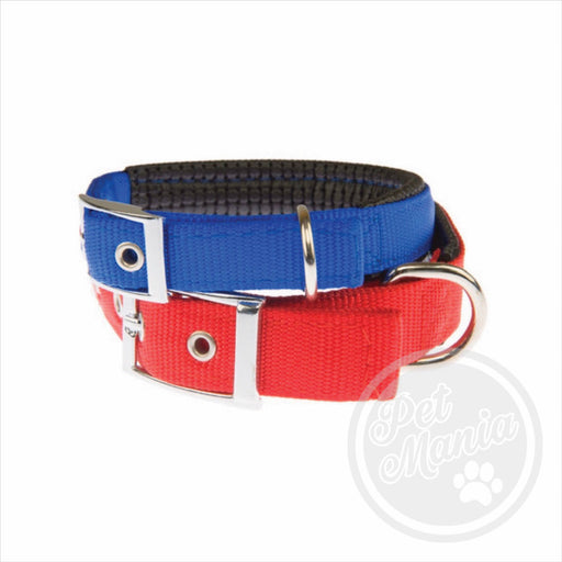 "Collar Padded L 25""c Assorted Color-Master Square"