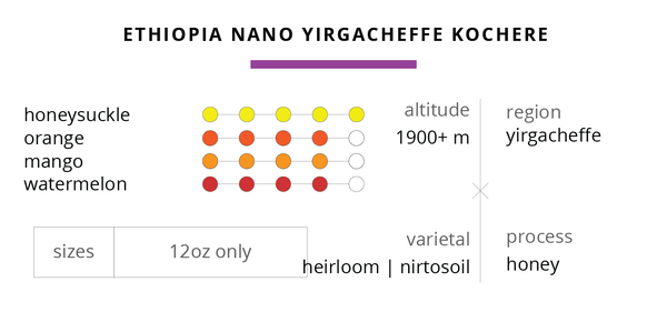 NANO LOT: Honey Processed Ethiopia Yirgacheffe Kochere
