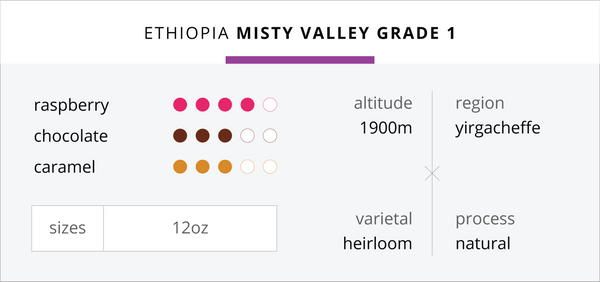 Ethiopia - Misty Valley Grade 1 (Natural Process)