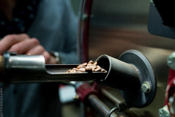 Coffee Knowledge & Roasting Practicum Class | January 27, 2019