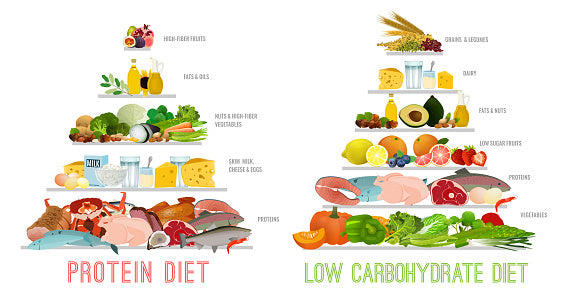keto diet and low carb diet and protein diet