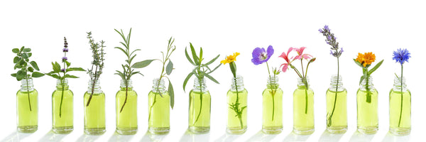 Essential Oils: The Basics, Part 1- What ARE essential oils?