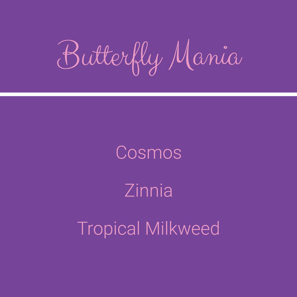 Butterfly Mania
