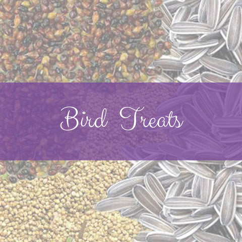 Bird Treats