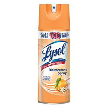 Lysol Spray Citrus Mead 12/12oz - P3, Paper Plastic Products Inc.