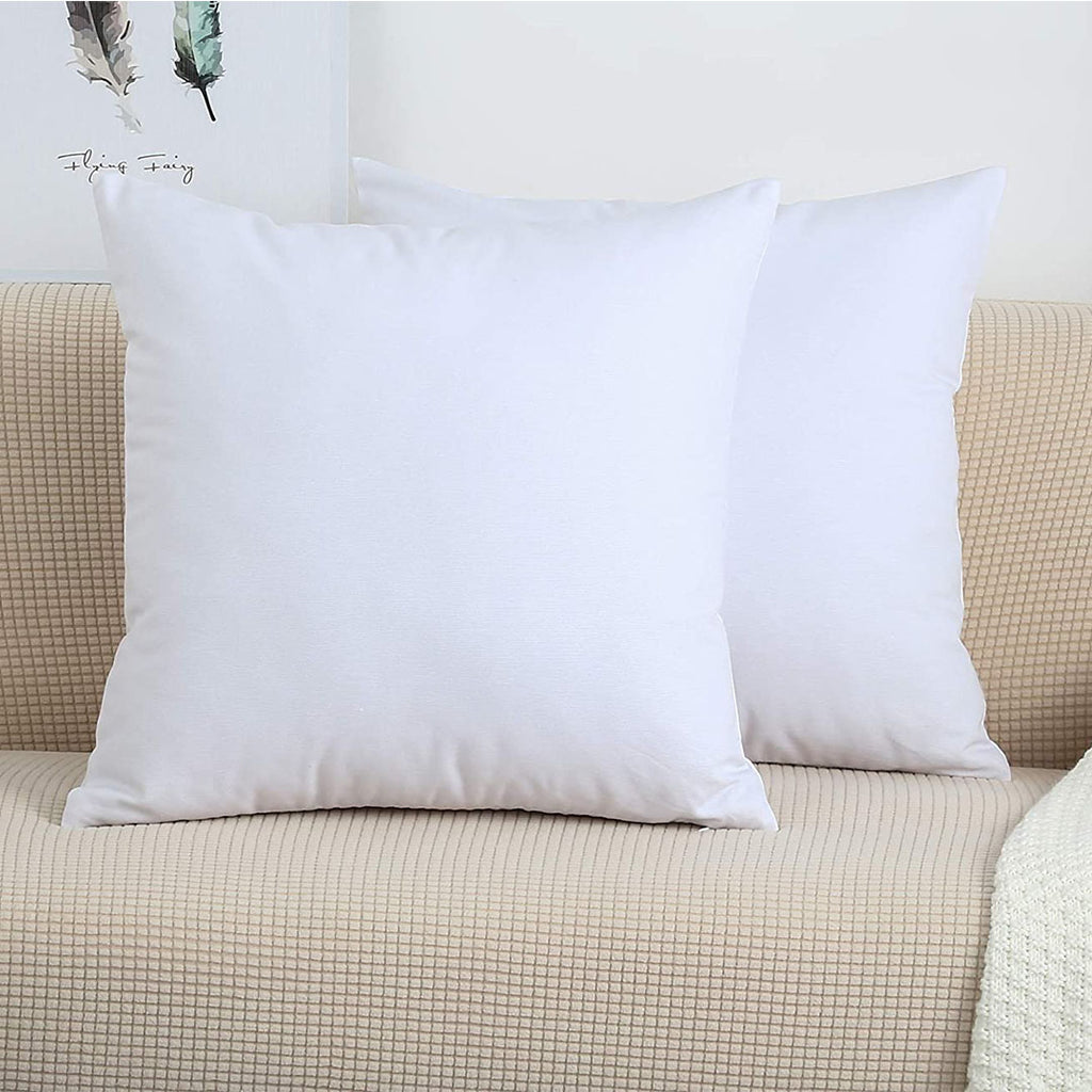 Two Filled Cushions FC-01