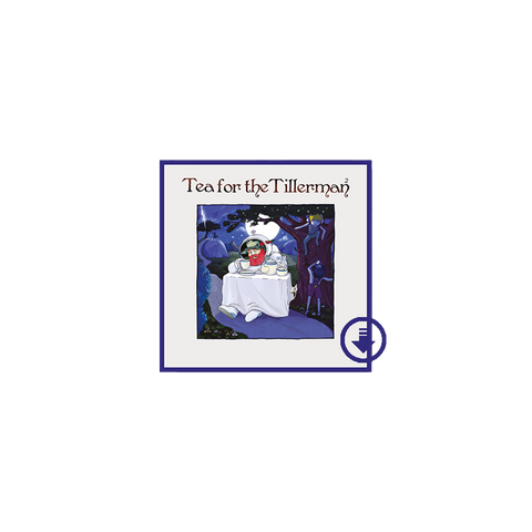 Tea For the Tillerman 2 Digital Album
