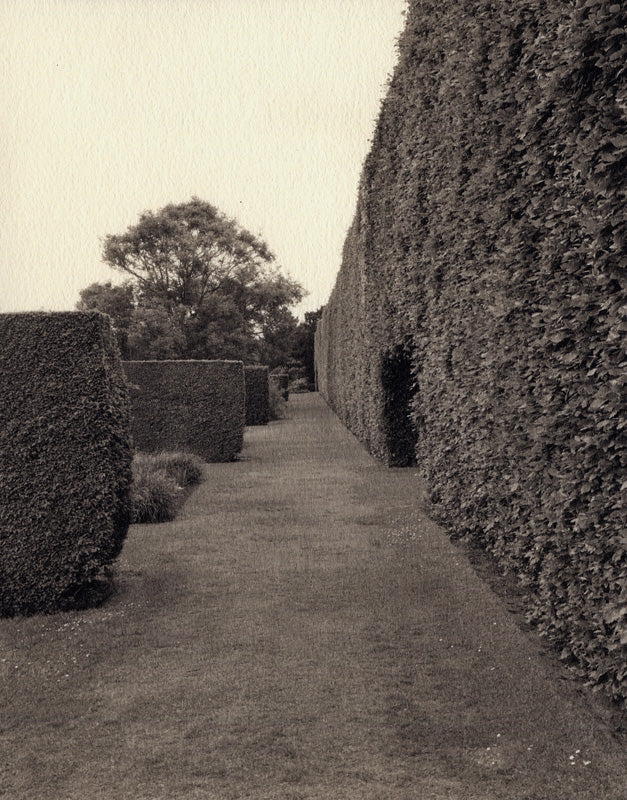 Edinburgh Hedge