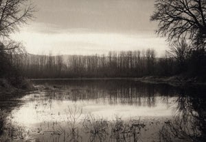 Pond on Sauvie Island