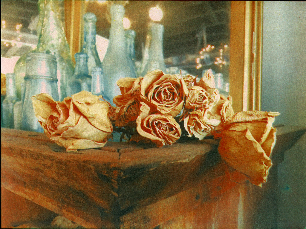 Antique store roses: Tri-color gum bichromate print