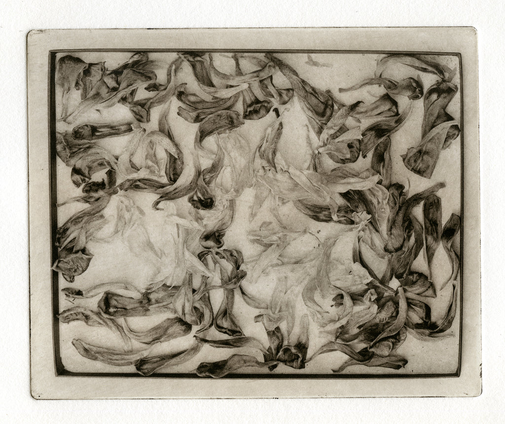 """Box of leaves"" Polymer plate gravure print"