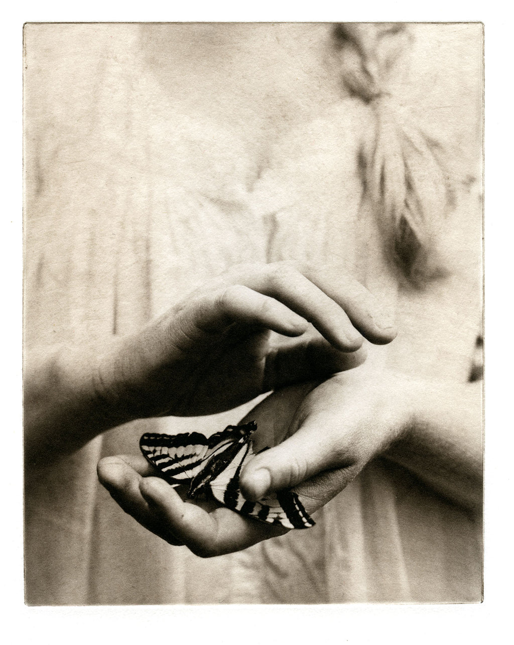 Covet   - Polymer photogravure print - Edition 2021
