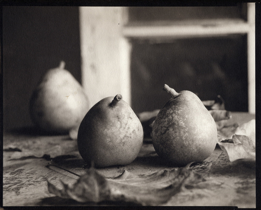 Pears with leaves