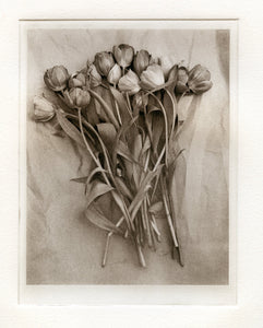 "Polymer photogravure "" Tulips on Paper"""