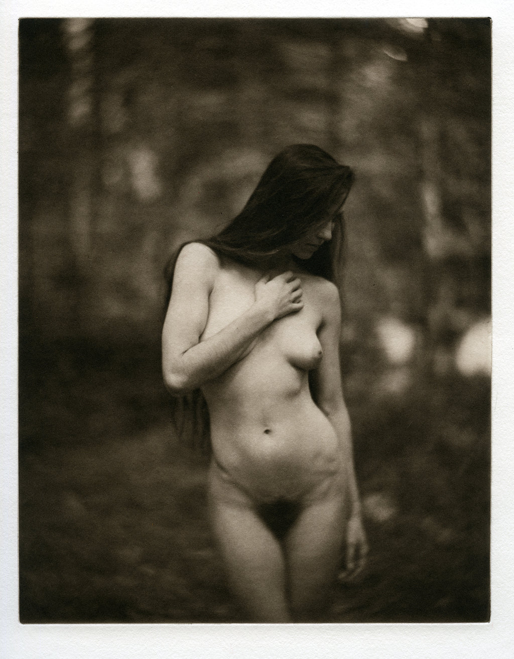 With the trees   - Polymer photogravure print - Edition 2021