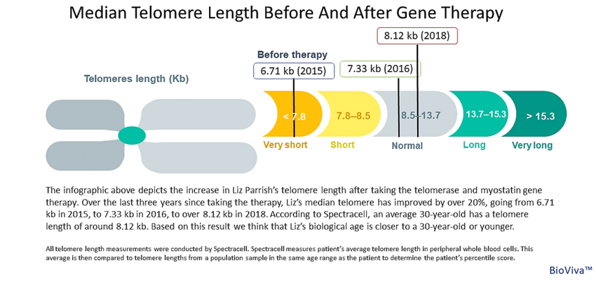 New telomere length results – A 2018 update by liz parrish