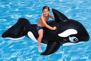 Intex Whale Ride On - The Swimming Pool Shop