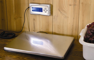 Stainless Steel Digital Scale 330 Lb. /145 kg.