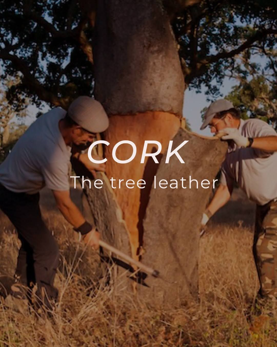 Cork-the tree leather