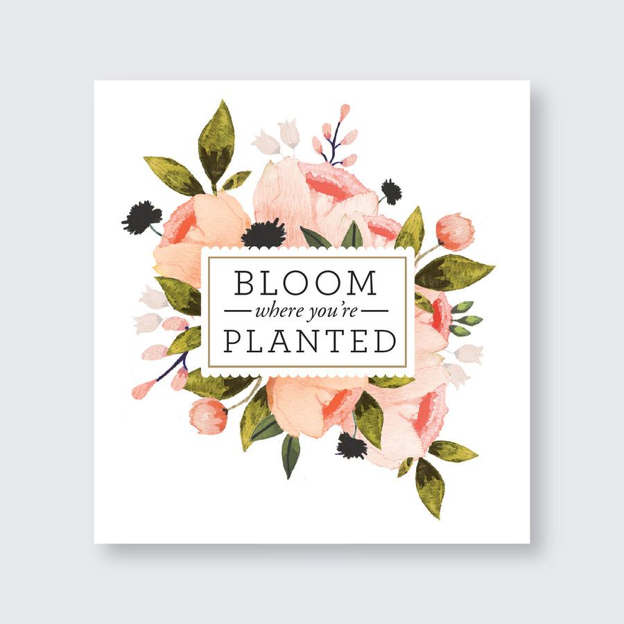 Haley Smith - Custom - Blush Floral